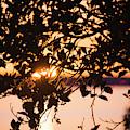 Sunset Over Bellingham Bay by Yulia Kazansky