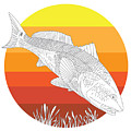 Sunset Redfish by Kevin Putman