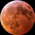Super Blood Moon 2019 Square by Terry DeLuco