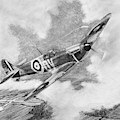 Supermarine Spitfire Mk. 1 by Douglas Castleman
