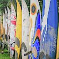 Surf Board Fence Maui Hawaii Vert by Edward Fielding