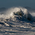 Surfing The Sunlight by Robert Potts