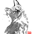 Surprised Cat by Pechane Sumie