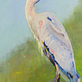 Surveyor - Great Blue Heron by Marsha Karle