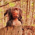 Swamp Creature by Debbie Stahre
