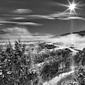 Swan Valley Winter Black And White by Leland D Howard
