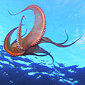 Swimming Octopus by Alex Bramwell