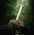 Sword In The Stone by Clayton Bastiani