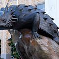 T C U Horned Frogs 052819 by Rospotte Photography
