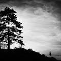 Taking Photographs by Okan YILMAZ