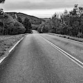 Talimena Scenic Drive Through Ouachita Mountain Landscapes - Monochrome by Gregory Ballos