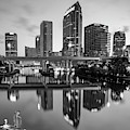 Tampa Skyline At Dawn Over The Riverwalk In Monochrome 1x1 by Gregory Ballos