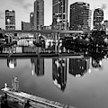 Tampa Skyline At Dawn Over The Riverwalk In Monochrome by Gregory Ballos