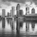 Tampa Skyline Monochrome Architecture On The Bay 1x1 by Gregory Ballos