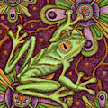 Tapestry Frog by Amy E Fraser