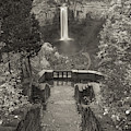 Taughannock Falls In Black And White by Dan Sproul
