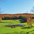 Tending To The Farm Woodstock Vermont Vt Vibrant Autumn Foliage by Toby McGuire