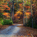 Tennessee Road  by Harriet Feagin