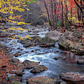 Tennessee Stream by Harriet Feagin