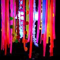 Tentacles Of Light by Kasey Jones