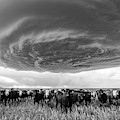 Texas Panhandle Meso by Scott Cordell