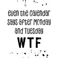 Text Art Even The Calendar Says Wtf by Melanie Viola