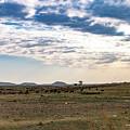 Thaba Nchu Landscape by Pieter Bruwer