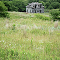 The Abandoned Farm In Summer by Mary Lee Dereske