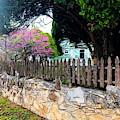 The Back Wall by Jenny Revitz Soper