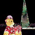 The Bentleyville Bear by Susan Rissi Tregoning