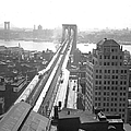 The Brooklyn Bridge by New York Daily News Archive