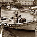 The Caterina And The  Portola Monterey Clipper Bow Fishing Boats by California Views Archives Mr Pat Hathaway Archives