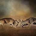 The Challengers - Whitetail Deer Art by Jai Johnson