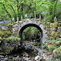 The Faerie Bridge Of Fas Na Cloiche by Nicholas Blackwell