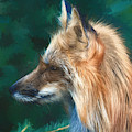 The Fox 235 - Painting by Ericamaxine Price