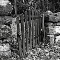 The Garden Entrance by Mark Jordan