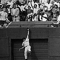 The Giants Amazing Willie Mays Amazes by New York Daily News Archive