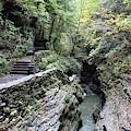 The Gorge Trail by Carol McGrath