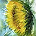 The Last Sunflower by Asha Sudhaker Shenoy