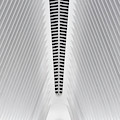The Oculus by Walter Passos