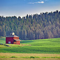 The Old Red Barn by Rick Berk