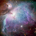 The Orion Nebula by Adam Romanowicz
