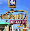 The Palomino by JC Findley