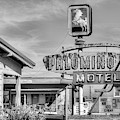The Palomino Motel Black And White by JC Findley