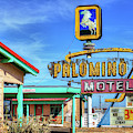 The Palomino Motel by JC Findley