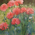 The Perfect Carnation by Kathleen McElwaine