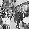 The Pied Piper Of Harlem, Cassius Clay by New York Daily News Archive