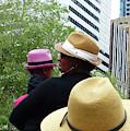 The Pink Hat by Rosanne Licciardi