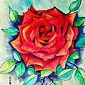 The Rose by Essam Iskander