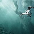 The Sardine Run 24 12 by Alexander Safonov